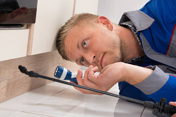 The Importance of Pest Control Port St Lucie Provides